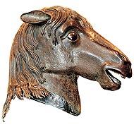 head_horse.jpg