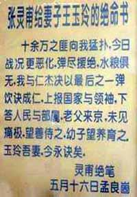 zhang_lingpu_will.jpg